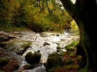 Autumn in Wicklow - River Liffey, Manor Kilbride & Lough Tay (Oct 2014)