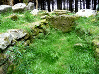 Ballyedmonduff Wedge Tomb